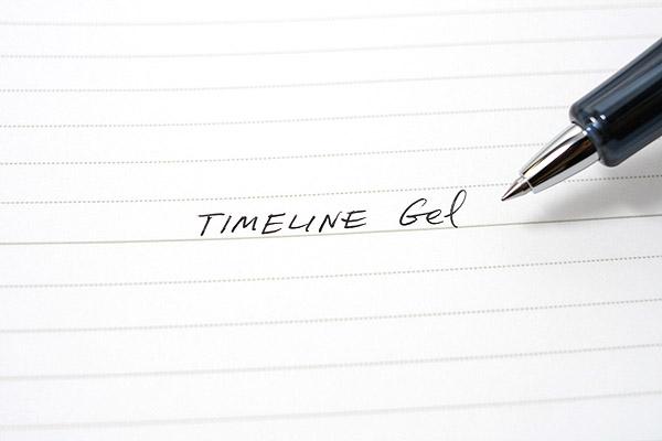 Pilot Timeline Gel Ink Pen - 0.5 mm - Carbon Black Body - PILOT LTL-3SR-CB