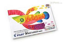 Pilot Watercolor Crayon & Water Brush Set - 12 Basic Color Set - PILOT AW-WC4-S12B
