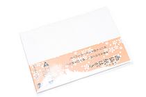 Akashiya Etegami Postcard Size Paper - Gasen Paper - Pack of 10 Sheets - AKASHIYA AO-20L