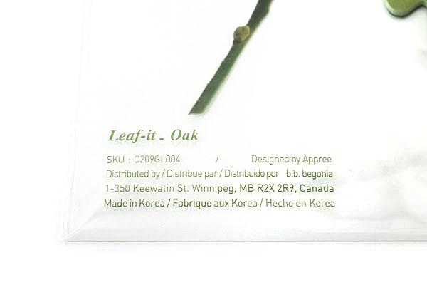 B.B.Begonia Leaf-it Memo Note Set (20 Sheets / Leaf) - Oak - Green - C209GL004S