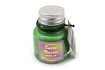 J. Herbin Dip Pen Pearlescent Ink - 30 ml Bottle - Apple Green - J. HERBIN H132-34