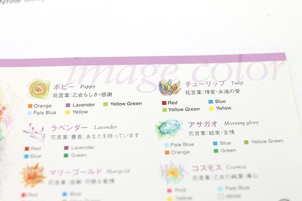 Aozora Dot Flowers Multi-Color Crayon Stick - Set of 6 - AOZORA DF CRAYON