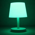 Glow in the Dark Lamp - Green