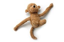 Midori Animal Magnet - Monkey - MIDORI 49697-006
