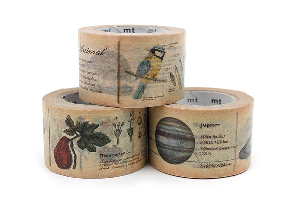 MT Ex Washi Tape - Encyclopedia Animal - 30 mm x 10 m - MT MTEX1P36