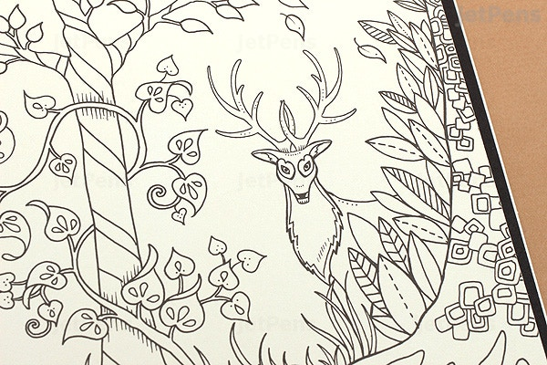 Enchanted Forest An Inky Quest Coloring Book Johanna Basford Jetpens