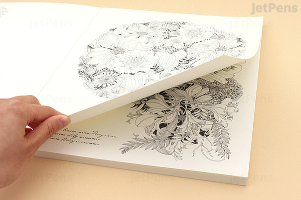 Floribunda: A Flower Coloring Book - Leila Duly   JetPens