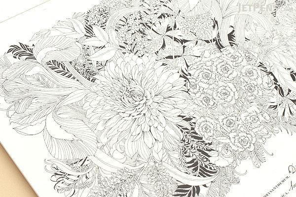 floribunda a flower coloring book leila duly laurence king 9781780677682 - Flower Coloring Book
