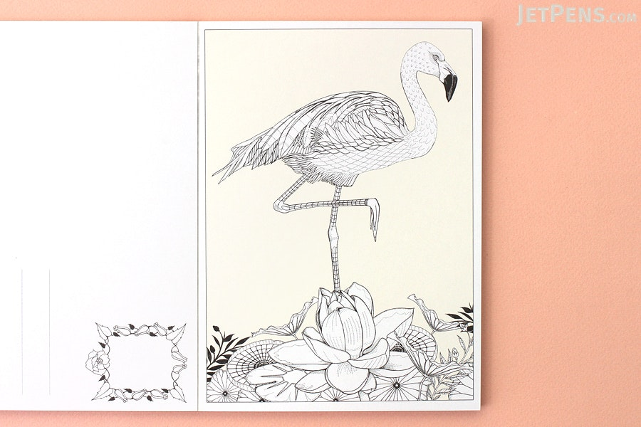 birdtopia color in postcards daisy fletcher set of 20 laurence king 9781780679426
